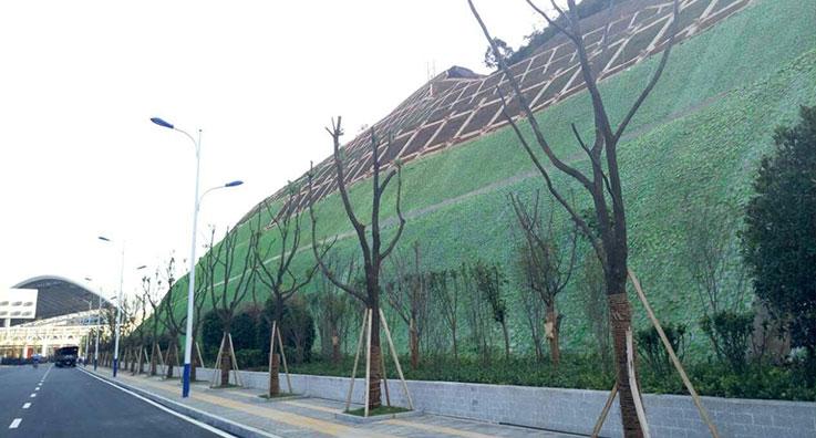 边坡绿化工程施工案例