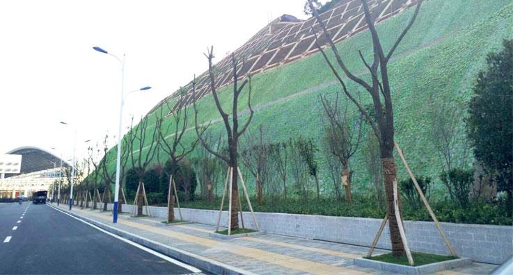 贵阳机场高速边坡绿化工程