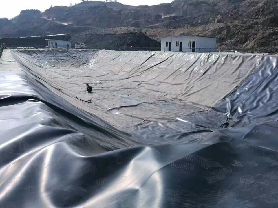 鱼塘防渗工程案例